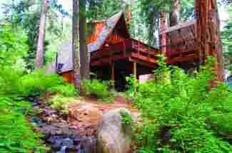 Westshore Cabin Near Homewood